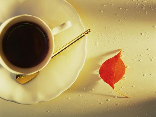 vị đắng của cà phê