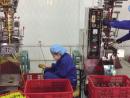 An Thai Cafe Hướng đến sản xuất cà phê theo quy trình khép kín